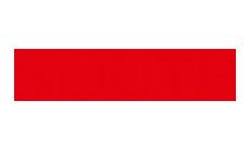 Logo marki South